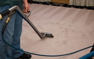 Carpet Cleaning Gainesville - Carpet cleaner Gainesville, Newberry, Alachua, FL