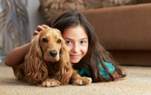 Pet stain and odor removal Gainesville, FL