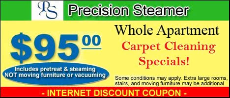 Carpet Cleaning Coupon Gainesville